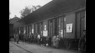 Международный Комитет Красного Креста в период Революции 1917 года и Гражданской войны
