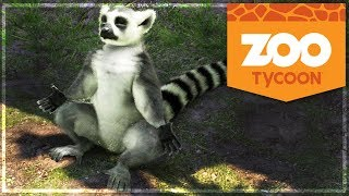 ZOO TYCOON : Le MAKI CATTA qui faisait du YOGA ! #14 (Zoo Tycoon: Ultimate Animal Collection)