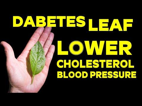 Natural Herbs ( Diabetes Control )