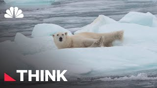Are All Endangered Species Worth Saving? | Think | NBC News
