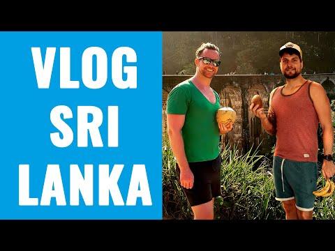 VLOG Sri Lanka - Gespräch mit Ben spricht