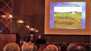 Опыт применения природного земледелия на Северо-Западе