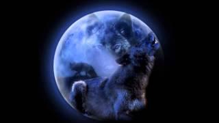 DJ MoW-  She Wolf  ( Remix )
