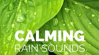 Cover images Calming Light Rain Sounds, The Relax Guys Nature Sounds Collection, Stress Relief Sounds Full HD
