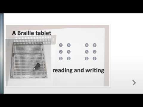 The Braille system
