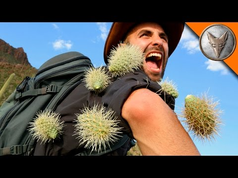 Thumbnail: EXTREME Cactus Attack!