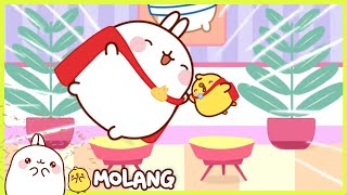 Molang - The casting | Full Molang episodes - Cartoon for kids