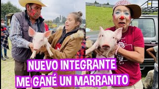 NUEVO INTEGRANTE EN LA FAMILIA / ME GANE UN MARRANITO / FATIMA Y CAELI / LOS DESTRAMPADOS