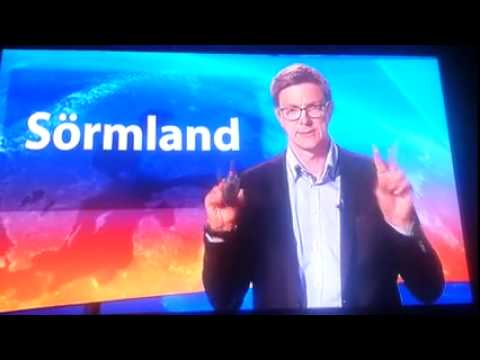 This Swedish Anchor Has No Idea He's On The Air