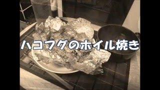 【節約サバイバル⑤】ハコフグのホイル焼き 2016 04 02