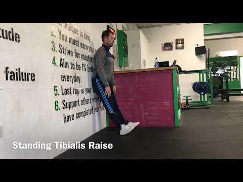 Standing Tibilias Raise