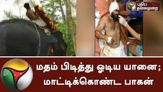 மதம் பிடித்து ஓடிய யானை; மாட்டிக்கொண்ட பாகன் | #Elephant #Kerala