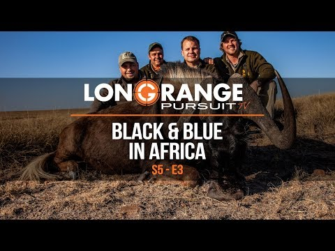 Long Range Black and Blue Wildebeest Hunting in Africa   Long Range Pursuit Season 5