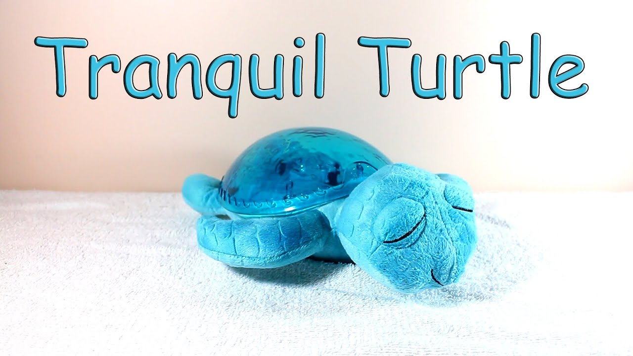 Tranquil Turtle by Cloud B