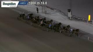 Vidéo de la course PMU PRIX ONE DU RIB