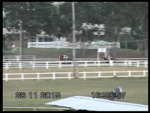 ม้าแข่งสนามโคราช ศึกยักษ์ลมกรดครั้งที่ 8