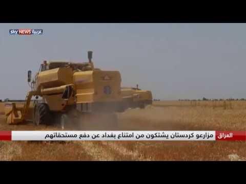 مزارعو كردستان يشتكون عدم صرف مستحقاتهم  - نشر قبل 2 ساعة