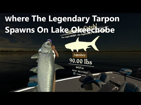 Rapala Pro Sreies Fishing : Where The Legendary Tarpon Spawns On Lake Okeechobee