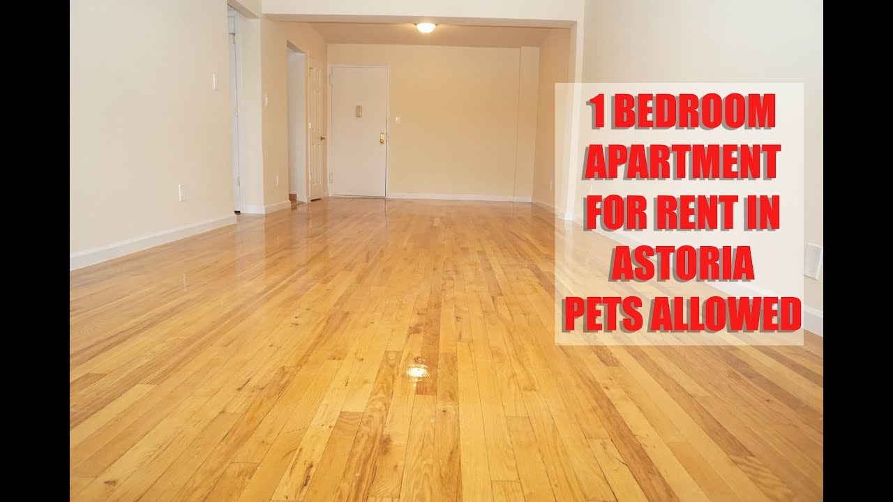 Pet friendly, All new 1 bedroom apartment for rent in