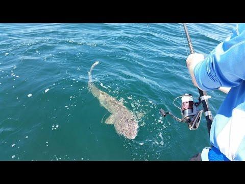 Shark fishing wrightsville beach nc youtube for Shark fishing nc