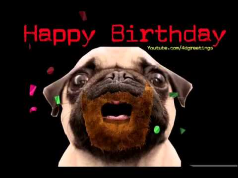 Happy Birthday Pug Song YouTube