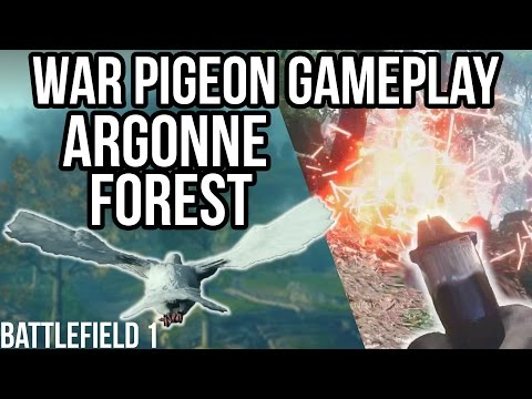 BATTLEFIELD 1 WAR PIGEON GAMEPLAY ARGONNE FOREST | BF1 New Game mode |