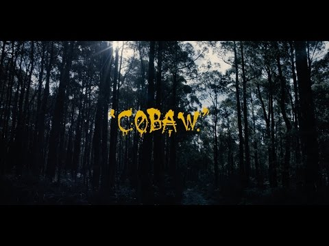 the-cactus-channel---cobaw-(official-video)