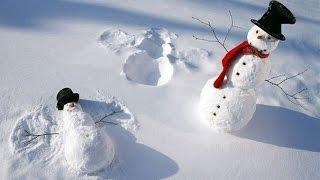 Самые необычные снеговики: 10 идей, как слепить снеговика