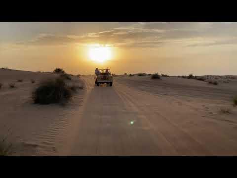Desert Safári 5 in Dubai Desert Conservation Reserve.