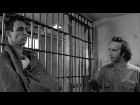Mr Benigni's 1st feature in America : Down By Law.