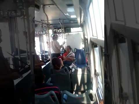 electric bus(2)