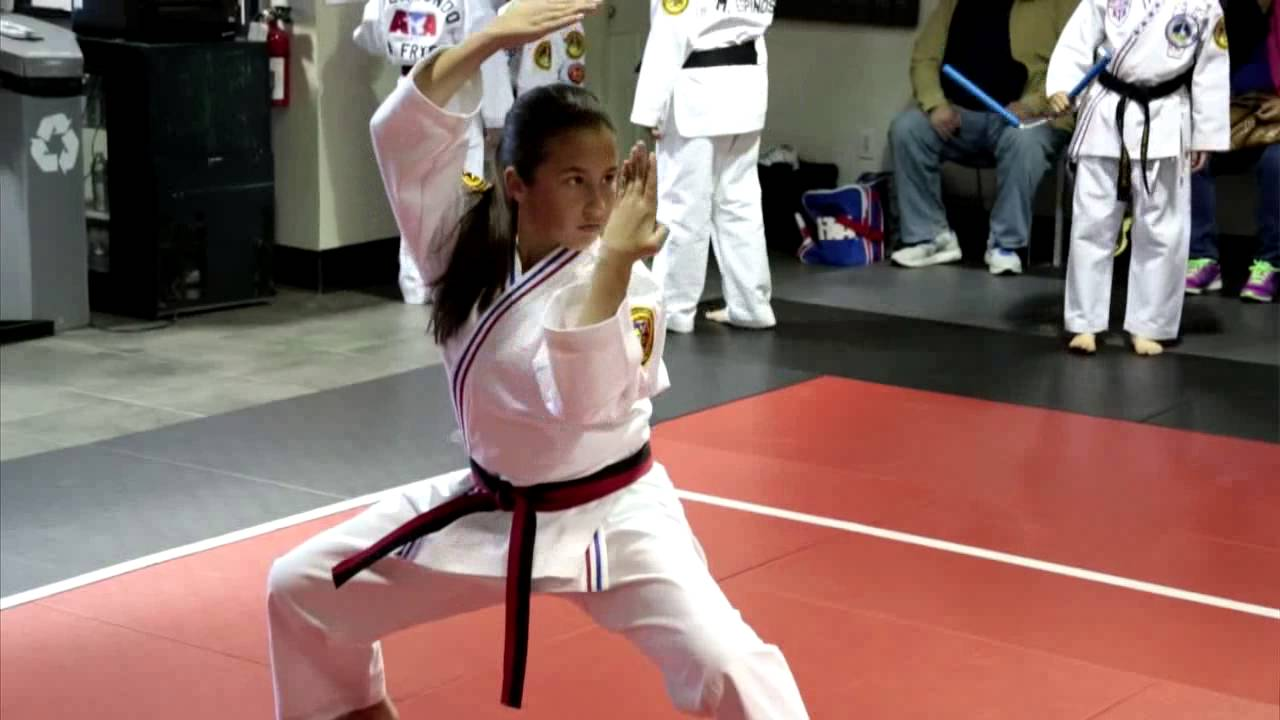 Learn Karate, & Self-Defense in Northbrook, Illinois