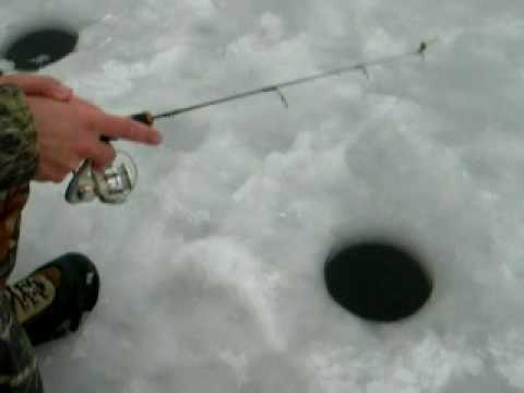 Ice fishing bluegill sunfish perch pike bass crappie st for Ice fishing for bass