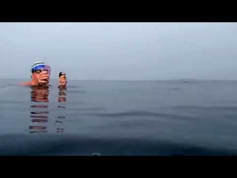 Roger and Otto Swim in the English Channel