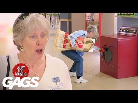 Mejores Bromas - Perro en la secadora