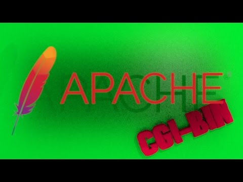 Apache CGI BIN C programing tutorial