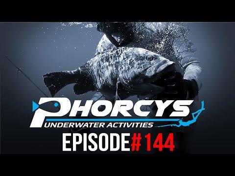 PHORCYS Spearfishing Worldwide Videos #144 - Underwater Activities 2019