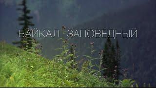 видео Окское ожерелье (Мелихово - Дворяниново - Серпухов - Таруса - Поленово, 2 дня)