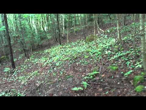 Rogart Mountain Hike Part 2