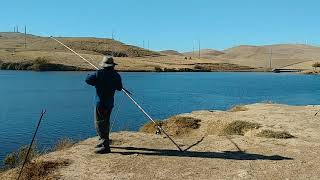 12 01 20 catching medium size bullhead channel catfish Bethany reservoir