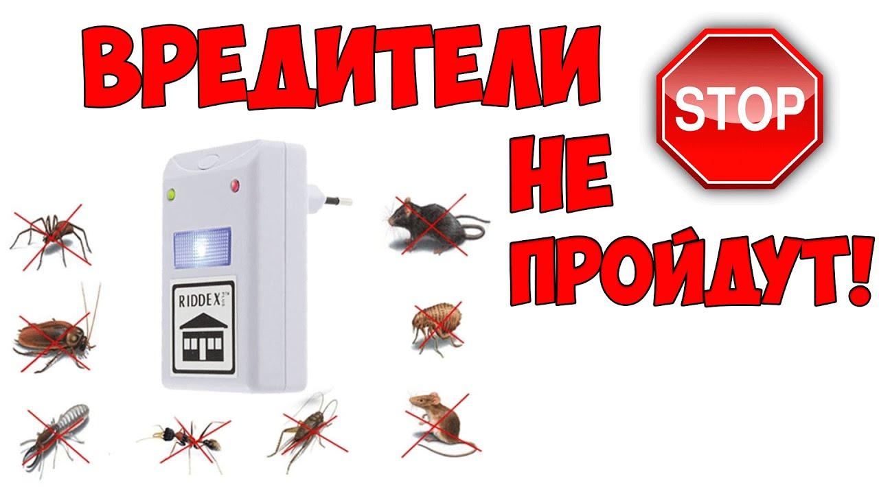 отпугиватель мышей и насекомых алиэкспресс