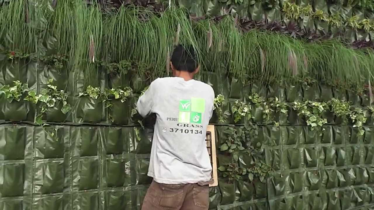 Como hacer un jardin vertical lima peru youtube for Jardin vertical barato