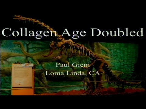 Collagen Age Doubled 3-4-2017 by Paul Giem