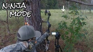 Bow Hunt Deer From The Ground