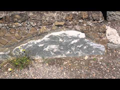 Tivoli-Rome Tour  Guide Alessandro Innocca (Alex) Hadrian's Villa