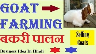 Goat Farming (बकरी पालन) - Business Idea In Hindi.....
