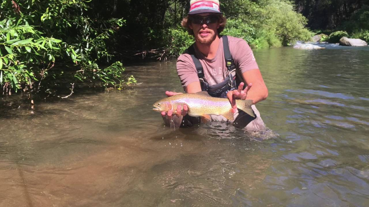McCloud River Fly Fishing YouTube