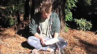 Part 3: Auroras on 2008-10-08: Man Made St Elmo's Fire Thumbnail
