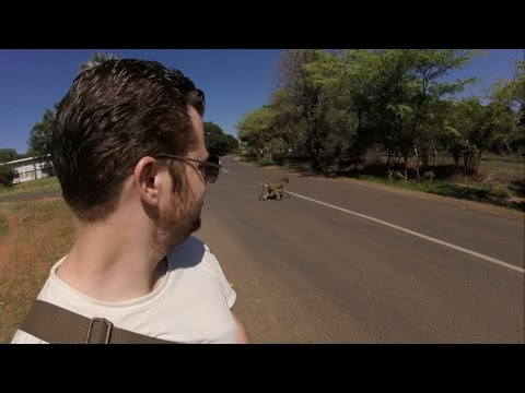 Victoria Falls and Hwange National Park Safari in Zimbabwe - Southern Africa (Part 6 of 12)