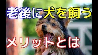 チャンネル登録はこちらからも可能です☆→http://ur0.pw/Gf0q 今回は、老...